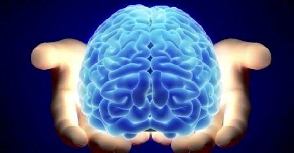 Genç Bir Beyin İçin