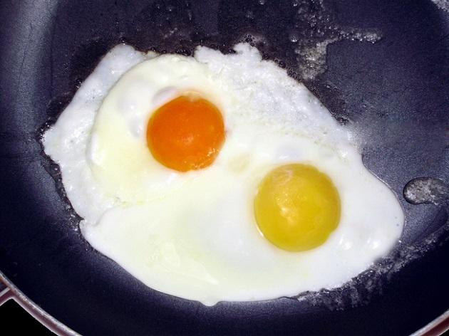 yumurtanın sarısı